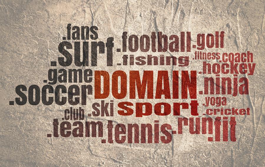 Domain kaufen