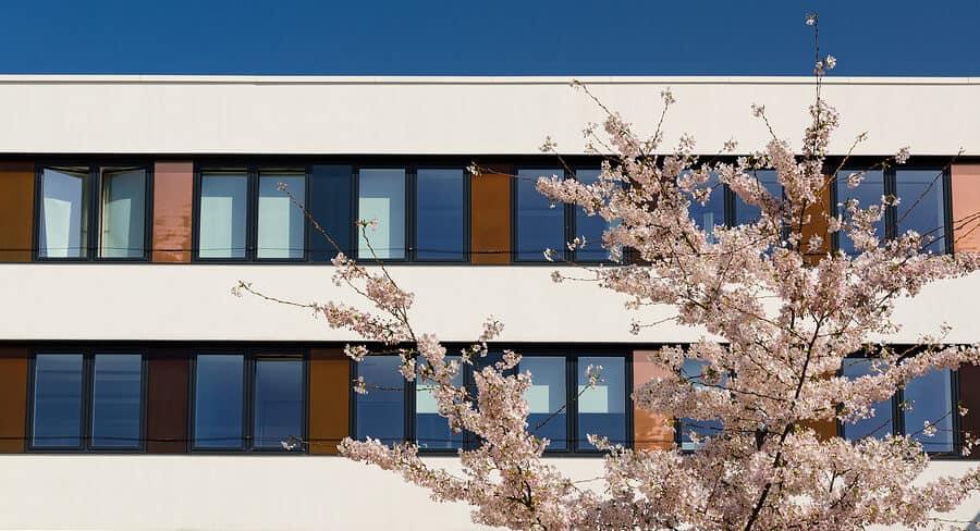sonnenschutz-office
