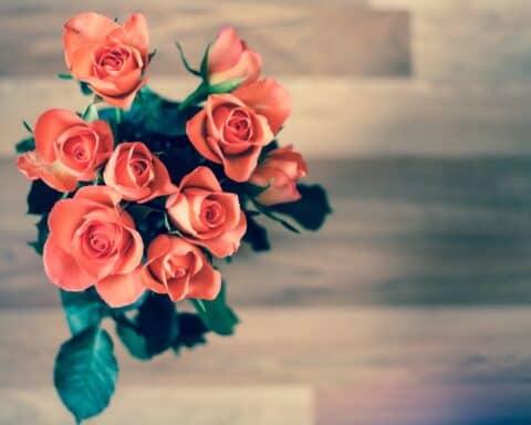 Am Valentinstag können Einzelhändler richtig Umsatz machen