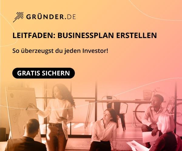 Businessplan erstellen (Whitepaper)