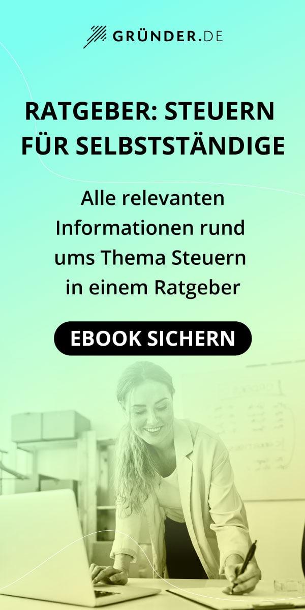 Steuern-Ratgeber (eBook)