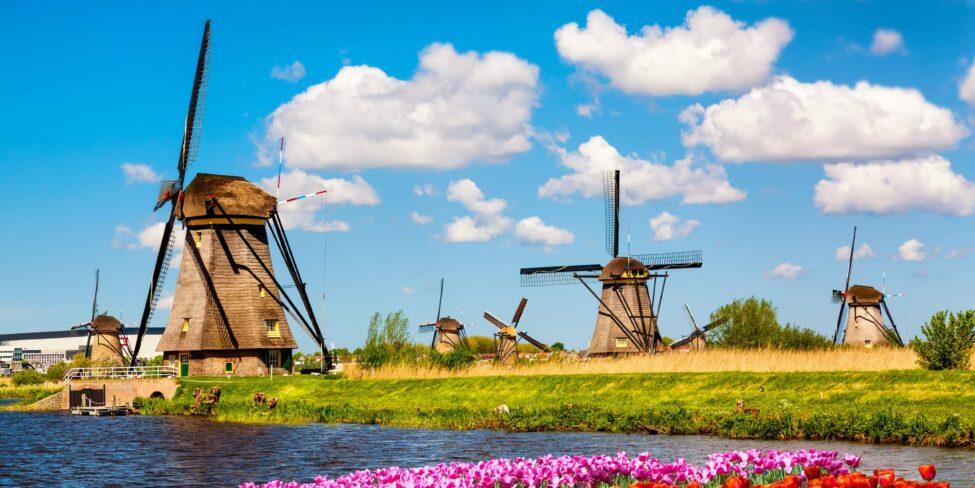 Startups Niederlanden